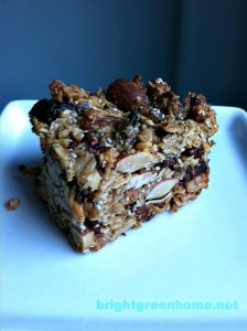 The Best Granola Bars | brightgreenhome.net