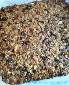 Granola, baked | brightgreenhome.net